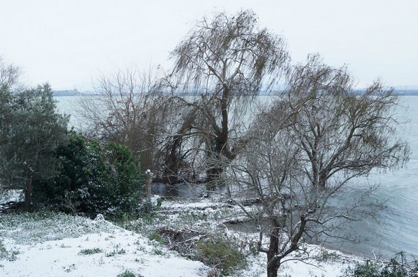 Le jardin voisin, son rivage et le lac Trasimène.