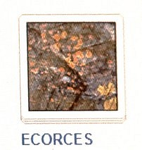 23 ECORCES