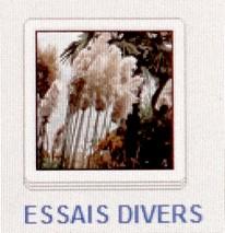 26 ESSAIS DIVERS