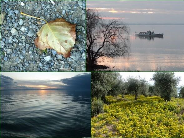 Exemple de quatre autres photos que j'utilise pour l'arrière-plan de mon bureau.