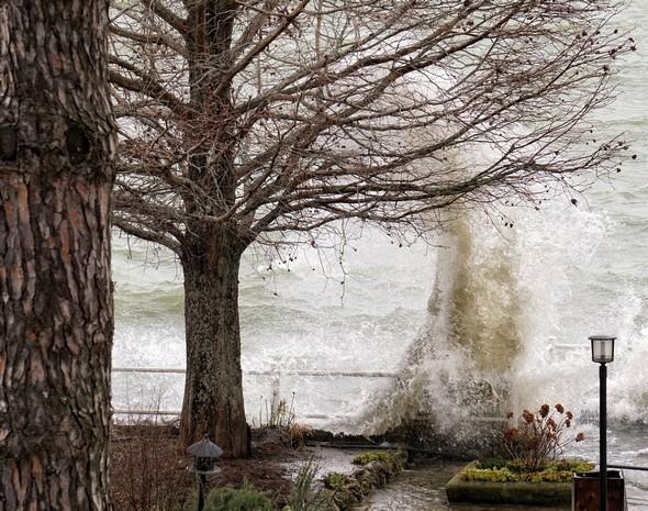 Entraîné par un puissant vent du sud-ouest, le Trasimène, déchaîné, monte à l'assaut de la digue de notre jardin.Isola Maggiore.30/01/2015 11:06