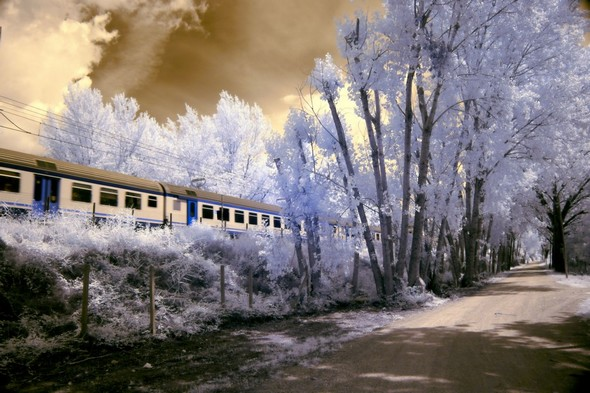 Photo 5La route de la rive en direction de Passignano, longeant le chemin de fer, après la gare de Tuoro-sul-Trasimeno.