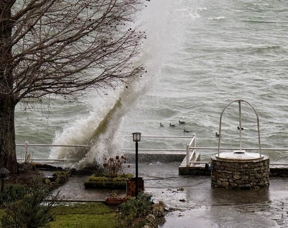 Maintenant des vagues commencent à fuser en hauteur.les vagues se font plus nombreuses sur le Trasimène.Du balcon de mon bureau, vue sur une partie de notre jardin et sur le Trasimène. Des vagues ont commencé l'assaut de la digue du jardin et de celle de notre darse.Nedirait-pn pas un monstre marin surgissant brusquement des flots?les vagues se font plus nombreuses sur le Trasimène.Du balcon de mon bureau, vue sur une partie de notre jardin et sur le Trasimène. Des vagues ont commencé l'assaut de la digue du jardin et de celle de notre darse. 11:02
