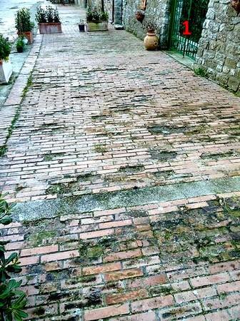 """La degradazione più grave, di fronte al giardino del ristorante """"Da Sauro"""".1 = Ingresso al giardino del ristorante """"Da Sauro""""."""
