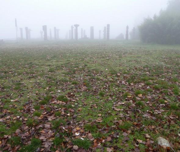 Brouillard du 18/11/2011.Même lieu de prise de vue que la précédente.