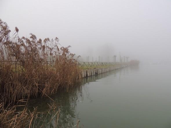 "De l'amarrage de notre ""pilotina"", vue sur la rive qui borde le Campo del Sole."