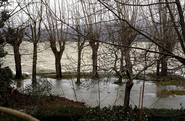 Le jardin a été partiellement et temporairement submergé.