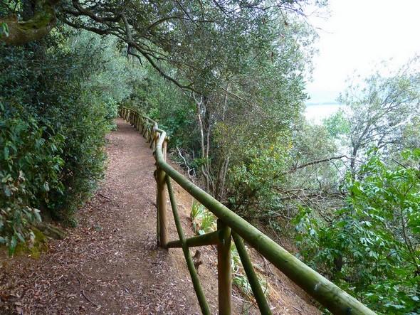 20 maggio 2011.<br /> Stretta parte del percorso.<br />La barriera protettiva era ancora intatta.<br />La pericolosa ripidezza del pendio è chiaramente visibile.