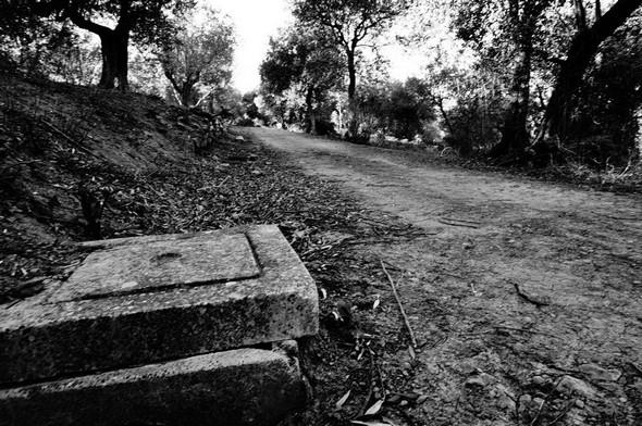 Strada panoramica del Molino. © Dinu Wilmotte
