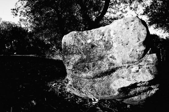 Détail.Strada panoramica del Molino. © Dinu Wilmotte.