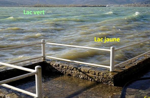 Le lac Trasimène présente en partie sa métamorphose en lac JAUNE.