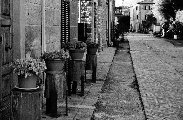 Façade fleurie. Photo prise en direction du nord. © Dinu Wilmotte.