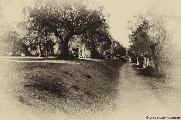 Strada panoramica del Molino. © Dinu et Jean Wilmotte