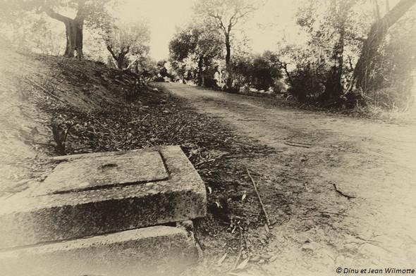 Strada panoramica del Molino