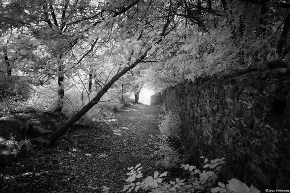 Haut de  la deuxième partie des stradelle della mura.En direction de l'entrée du château Guglielmi, à l'extrémité de la viale Marchesa Isabella.