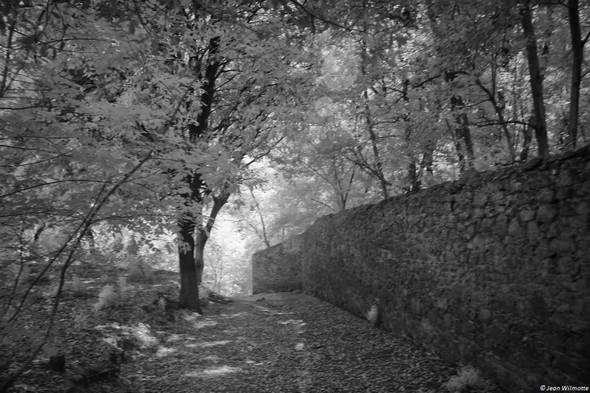 Un peu plus bas, le chemin va dessiner une pente plus abrupte pour rejoindre la viale Marchesa Isabella.