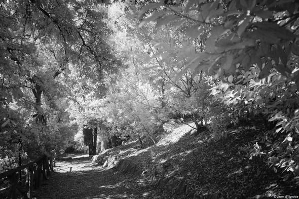 Partie supérieure de la Strada di San Francesco.Avant d'arriver au Sentiero dei Lecci et à la chapelle au lieu considéré comme le grabat de San Francesco.
