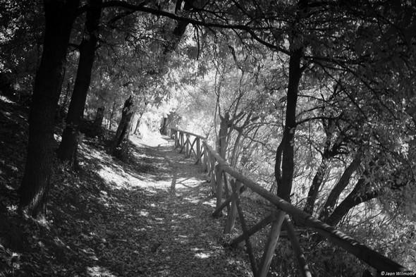 Démarrage du sentiero dei lecci, au départ de la strada di San Francesco.