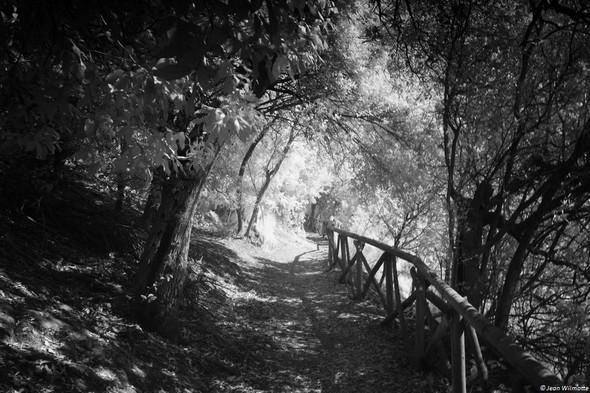 Début du sentier en partant de la strada di San Francesco.