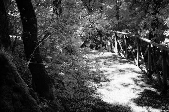 Dernier tournant avant de rejoindre la bifurcation avec :  1) la strada panoramica nord, 2) le chemin en escalier remontant vers la viale Marchesa Isabella.