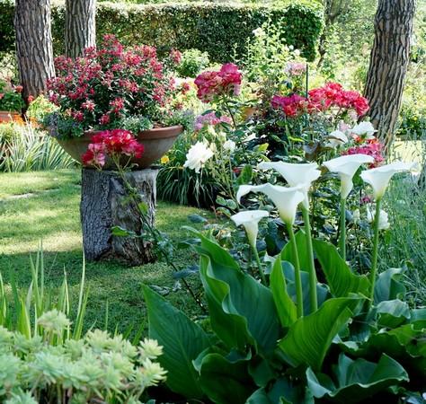 Une partie de l'ensemble floral dans le secteur supérieur droit de la pelouse.