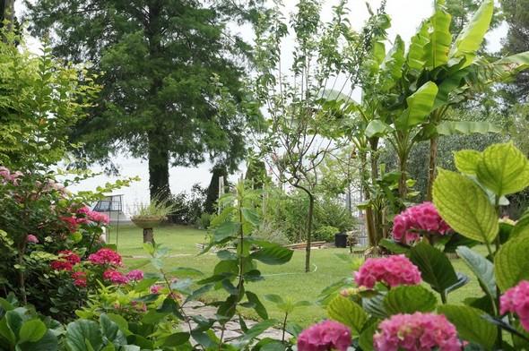 Depuis la terrasse de la maison, vue sur la seconde partie de notre pelouse menant à notre darse privée. © Dinu Wilmotte