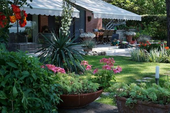 Vue latérale, mais prise cette fois de la première partie de la pelouse. La plus proche de la terrasse et de la maison.