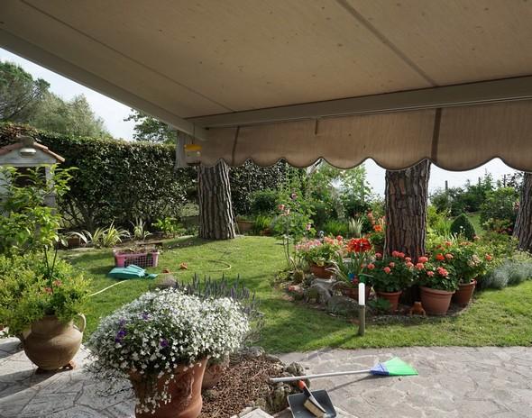 Depuis la terrasse, vue partielle du jardin du côté gauche.
