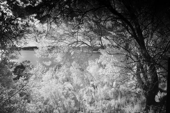 Bonne vue sur le lac Trasimène.Et végétation maintenant étincelante.