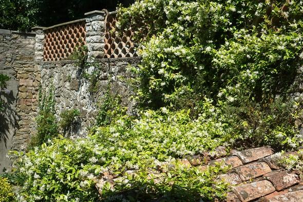 Extension du massif sur le toit d'une petite niche murale.
