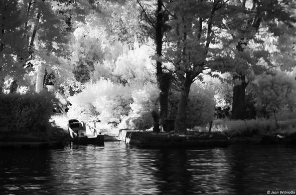 Barque dans la petite darsena d'une des maisons de la pointe nord de l'Isola Maggiore.06:19.