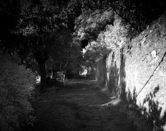 Au pied de la strada di San Michele Arcangelo.A droite, le mur du jardin du château Guglielmi.