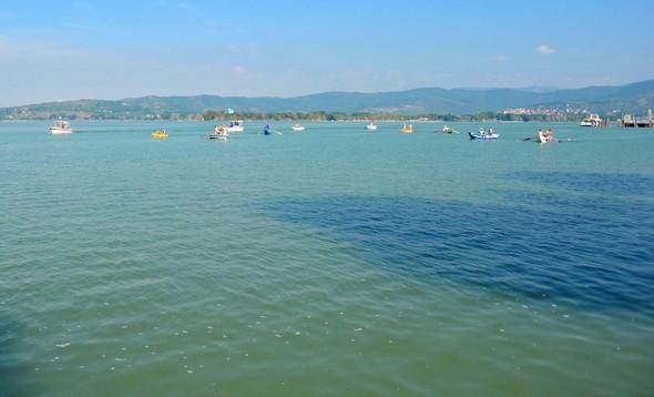 La flotte des participants approche de la rive sud-ouest de l'Isola Maggiore.