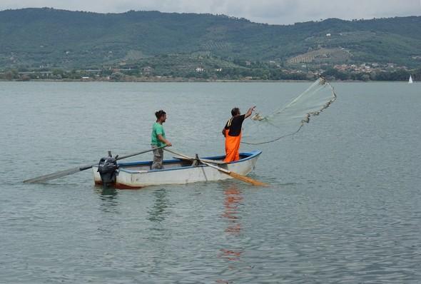 Démonstration d'un des modes traditionnels de pêche sur le Trasimèneorganisée à l'intention de nos visiteurs.