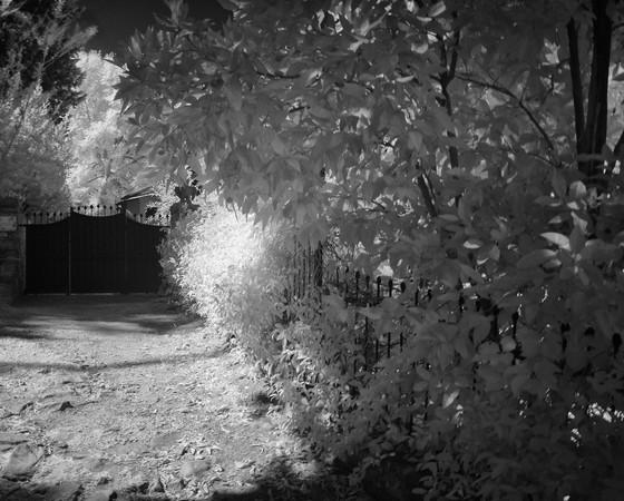 La voie d'accès au portail : vue rapprochée.