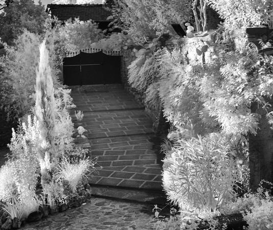 Une fois le portail franchi, la rampe menant au jardin et à la maison.