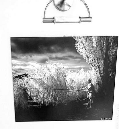 Autre vue partielle des photos exposées dans notre cage d'escalier...