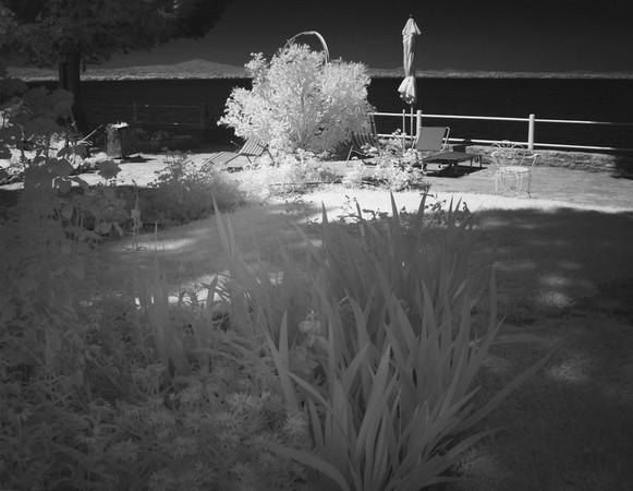 Partie du jardin au bord du lac.4 juillet 2015 - 08:54