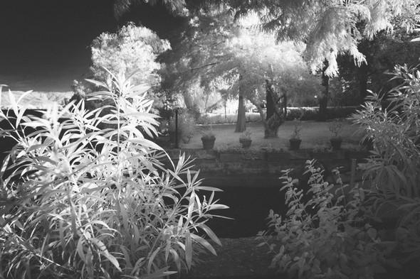 Une trouée de notre végétation nous offre une perspective sur le beau jardin d'Umberto Chiappafreddo.4 août 2015  -  06:13.