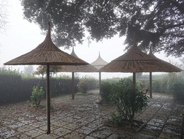 """La terrasse-jardin de """"Il Molo"""", le bar situé sur la piazzetta San Francesco.Comme la photo précédente, cette vue dégage une atmosphère désertique d'abandon et de spleen."""