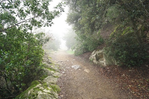 """On approche de la fin de la partie """"sentier"""" du lungolago."""