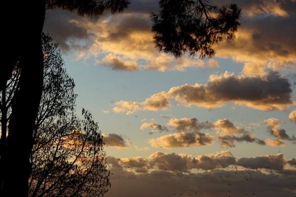 Les nuages s'accumulente de plus en plus et s'assombrissent, de plus en plus intimidants.