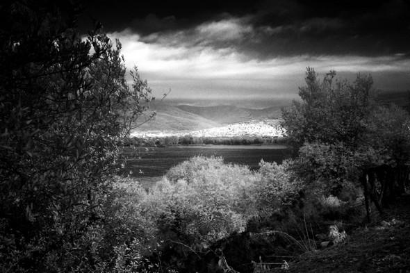 A certains moments exceptionnels, Tuoro-sul-Trasimeno, seul tout ensoleillé, s'impose comme un réel triangle d'or dans le paysage.