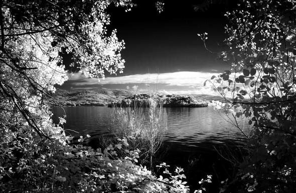 Depuis le lungolago, vue sur l'Isola Minore comme dans un écrin. Isola Maggiore.