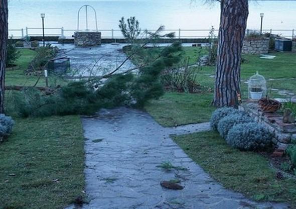 L'eau du bassin d'orage s'est retirée...
