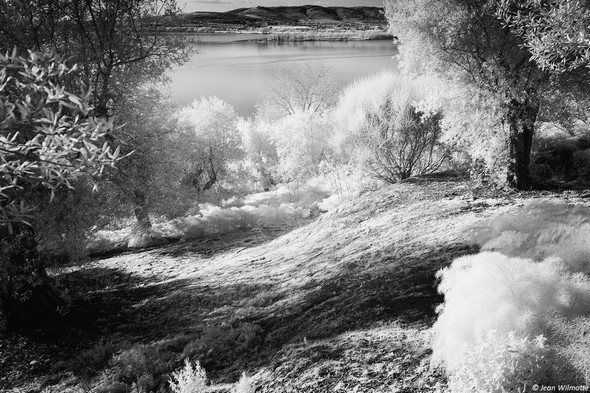 Du côté gauche de la strada, vue partielle sur le lac Trasimène et la rive de Tuoro-Navaccia.