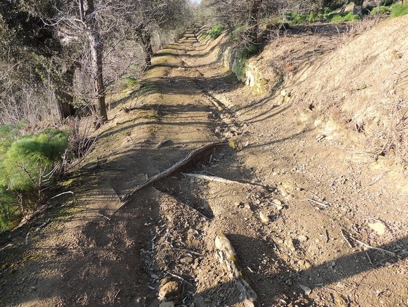 Avant les travaux de 2016.Le ravinement est accentué et de nombreuses racines sont mises à nu.