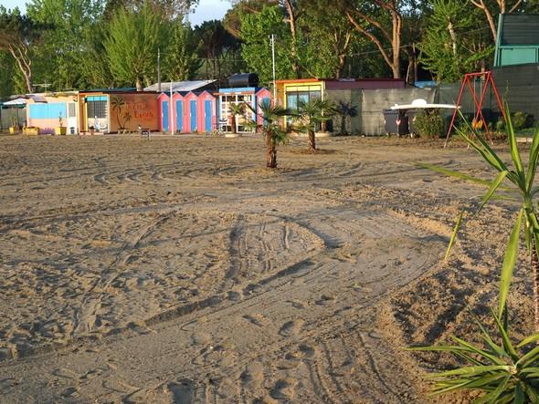 L'espace délimité par les palmiers et les cabanons colorés qui abritent le matériel des activités.