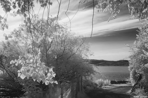 Après avoir quitté la via Guglielmi, à l'extrémité nord de l'Isola Maggiore, on débouche sur sa petite plage et le lac Trasimène.