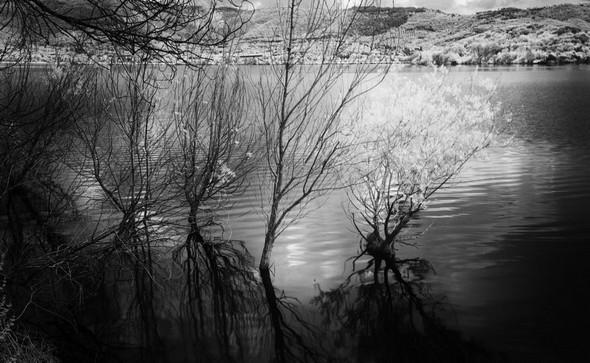 Le regard complètement relevé, la côte nord du lac Trasimène se distingue aisément !